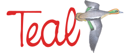 Tealwash logo